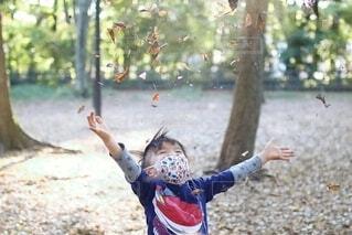 落葉を投げるの写真・画像素材[4011264]