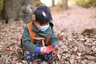 冬の森の中で宝探しの写真・画像素材[4011266]