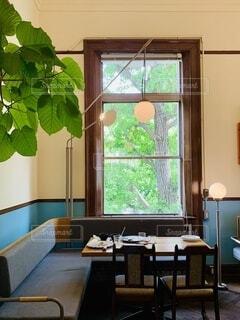 大きな窓とグリーンのあるカフェの写真・画像素材[3983799]
