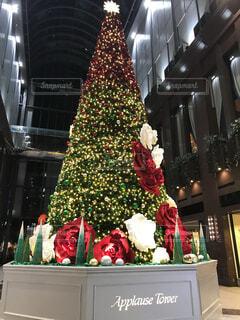 大きなクリスマスツリーのディスプレイの写真・画像素材[3990616]