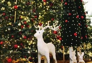 クリスマスツリーの隣に立っているトナカイの人形の写真・画像素材[3992232]