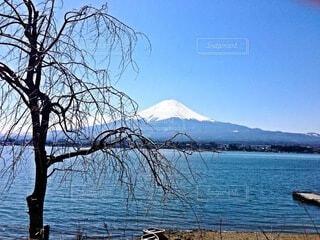 富士山の写真・画像素材[4962679]