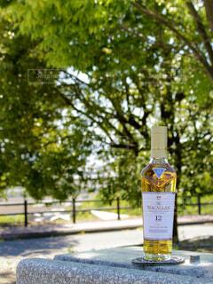 屋外,樹木,ボトル,ウイスキー,ドリンク,アルコール,シングルモルト,マッカラン,ハーフボトル,ウイスキーがお好きでしょ?