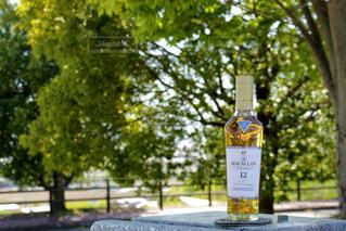 公園,屋外,樹木,ボトル,ウイスキー,ドリンク,アルコール,シングルモルト,ハーフボトル,ウイスキーがお好きでしょ?