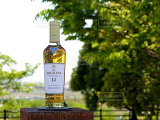 屋外,樹木,ボトル,ガラス瓶,ウイスキー,ドリンク,アルコール,シングルモルト,テキスト,マッカラン,ハーフボトル,ウイスキーがお好きでしょ?