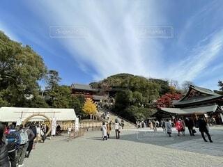 鎌倉・鶴岡八幡宮を訪れる人々の写真・画像素材[3991131]