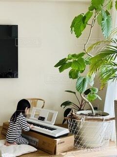 リビングでキーボードを弾く子供の写真・画像素材[4010739]
