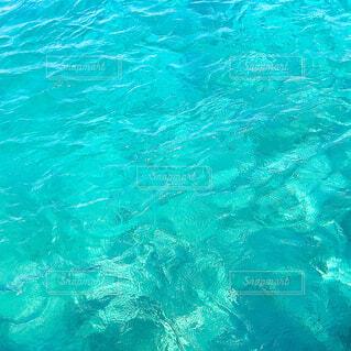 モルディブの海の色の写真・画像素材[4028097]