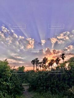 夕暮れ時の空の写真・画像素材[4051963]