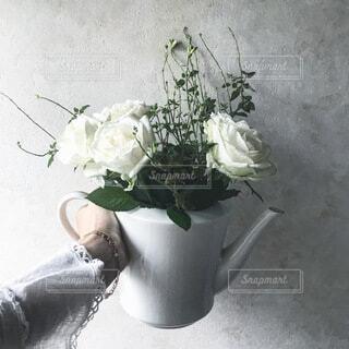 ティーポットに白い薔薇をの写真・画像素材[4183849]