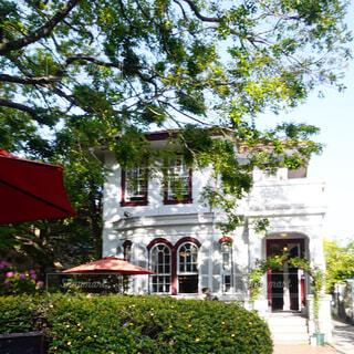 山手の丘の可愛いカフェの写真・画像素材[4409817]