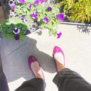 お花とピンクのバレエシューズの写真・画像素材[4412113]