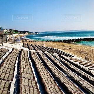 たたみいわしと湘南の海の写真・画像素材[3997503]