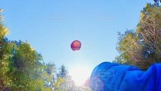 自然,風景,空,屋外,太陽,朝日,緑,赤,青空,手,日差し,光,正月,りんご,ブルー,お正月,日の出,カラー,新年,初日の出,コントラスト,nature