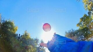 自然,風景,空,屋外,太陽,朝日,緑,赤,青空,手,日差し,光,正月,りんご,ブルー,お正月,日の出,湘南,カラー,新年,初日の出,コントラスト,nature
