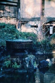 自然,風景,建物,屋外,緑,綺麗,青,水面,アート,景色,苔,噴水,石,水草,雰囲気,小田原,おしゃれ