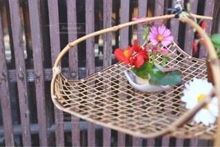 花束の写真・画像素材[4166906]