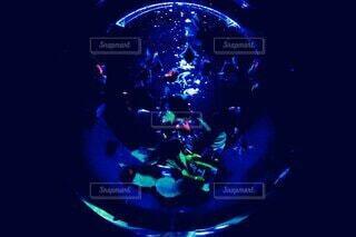 水族館,暗い,ガラス,泡,金魚,水槽,バブル