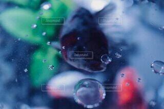 魚,水面,金魚,水槽,ドロップ,バブル,液滴