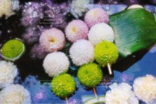 花のお団子の写真・画像素材[4252781]