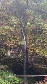 自然,風景,秋,森林,屋外,水面,山,景色,滝,樹木,新緑,渓谷,草木