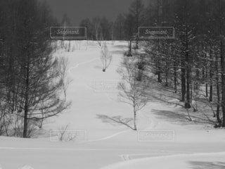 冬,雪,運動,ウィンタースポーツ,スノーボード 雪板