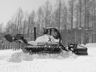 風景,冬,雪,屋外,樹木,運動,ウィンタースポーツ,圧雪車