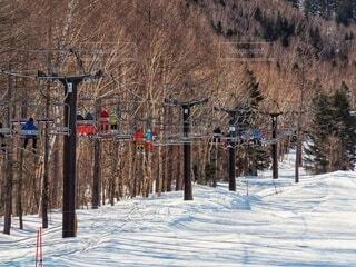 自然,冬,森林,雪,スキー,運動,ゲレンデ,スキー場,リフト,スノーボード,ウィンタースポーツ