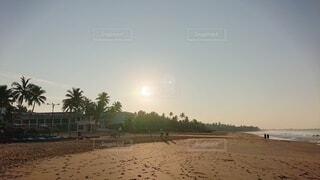 自然,空,朝日,ビーチ,砂浜,海岸,正月,ヤシの木,お正月,日の出,新年,初日の出,スリランカ,ヒッカドゥア