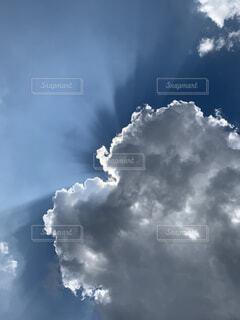 自然,空,夏,屋外,雲,夏空,日中,積雲