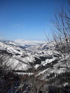 自然,風景,空,冬,雪,屋外,山,樹木,スキー,運動,ゲレンデ,スノーボード,斜面,ウィンタースポーツ,草木,日中