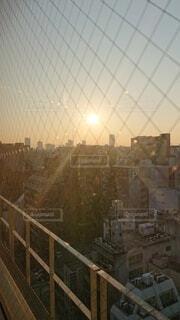 空,ビル,朝日,逆光,日の出,高層,網目
