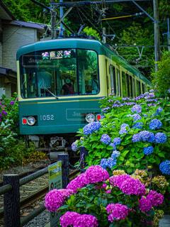 梅雨を駆ける列車の写真・画像素材[4544888]