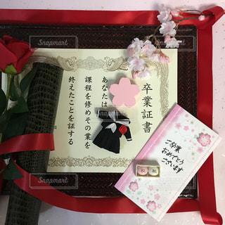 桜の写真・画像素材[394815]