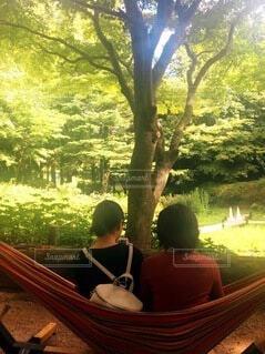 女性,風景,公園,森林,木,屋外,緑,ハンモック,樹木,休憩,人物,人,癒し,森林浴,草木