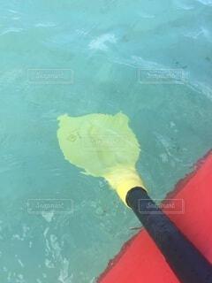 海,海水浴,屋外,舟,サーフィン,赤,ボート,水,透明,黄色,水面,日光,反射,泳ぐ,キラキラ,グアム,マリンスポーツ,パドル,オール