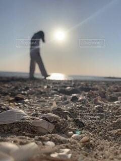砂浜の女性の写真・画像素材[4638153]
