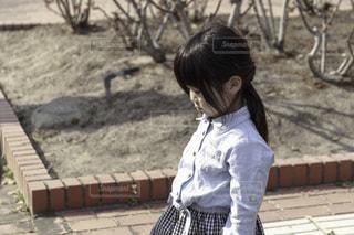 枯れ木 - No.513811