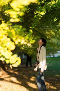 草の中に立っている小さな男の子の写真・画像素材[865530]