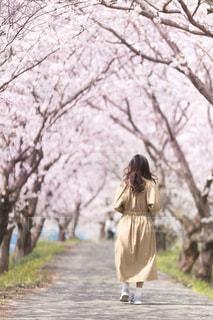 春コーデの写真・画像素材[1116720]