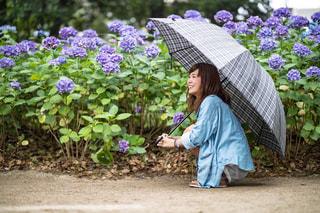 あじさいと傘とわたしの写真・画像素材[1256040]