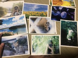 水色の写真・画像素材[1432672]