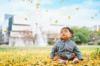 赤ちゃんとイチョウの写真・画像素材[4019714]