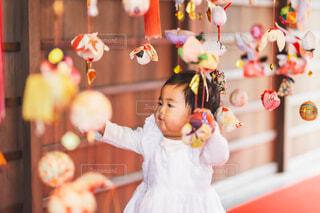 さげもん祭の写真・画像素材[4214513]