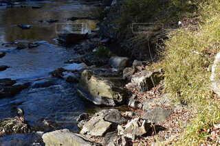 自然,川,岩,嵐山渓谷