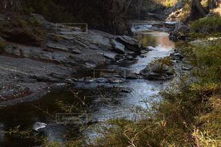 風景,川,水辺,嵐山渓谷