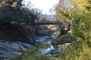 橋,川,水面,水辺,嵐山渓谷
