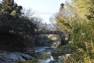 橋,川,景色,嵐山渓谷