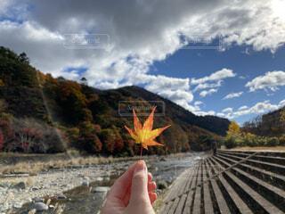 秋の気配の写真・画像素材[4016301]