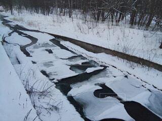 自然,風景,冬,雪,水面,池,冷たい